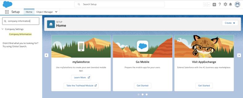 SFDC Beginner - Beginner's Guide for Salesforce