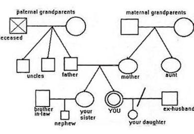 Family Genograms And Addiction