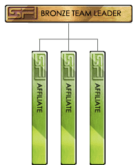 Bronze Team Leader