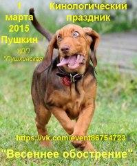 01032015_pushkin