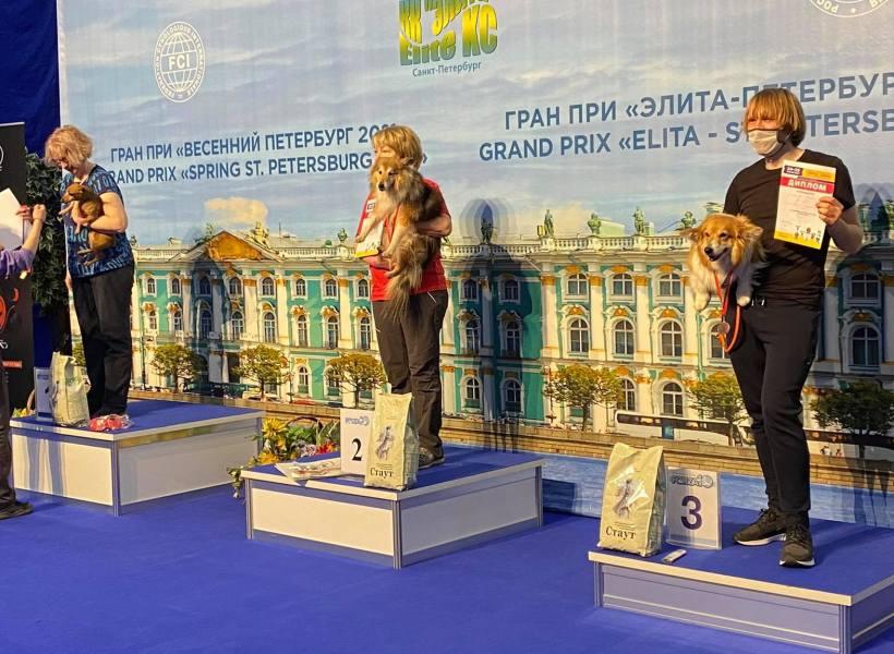 Церемония награждения победителей туннельных соревнований по аджилити