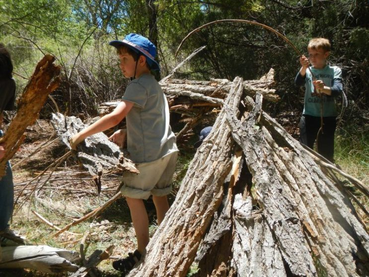 Forts at the Beaver Ponds!