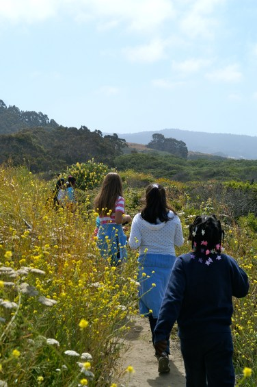 Explorers walk through Pescadero Marsh