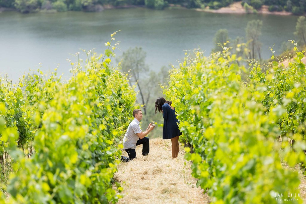 Viader Winery marriage proposal with a guy on his knee wearing a gray shirt and the girl wearing a blue dress with the lake in the background