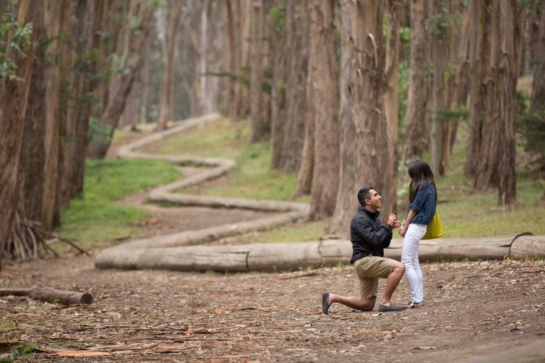 lovers lane marriage proposal with the snake of logs in the background