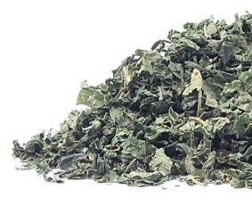nettle_leaf-product_1x-1411395549