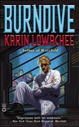 burndive-by-karin-lowachee cover