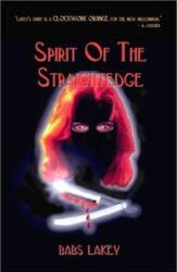 spirit-of-the-straightedge-by-babs-lakey cover