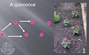 Schema a quinconce per la disposizione delle piante