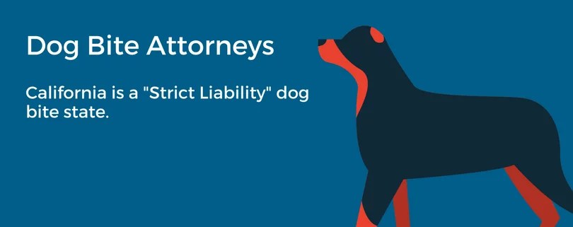 Los Angeles dog bite attorneys understand strict liability in California