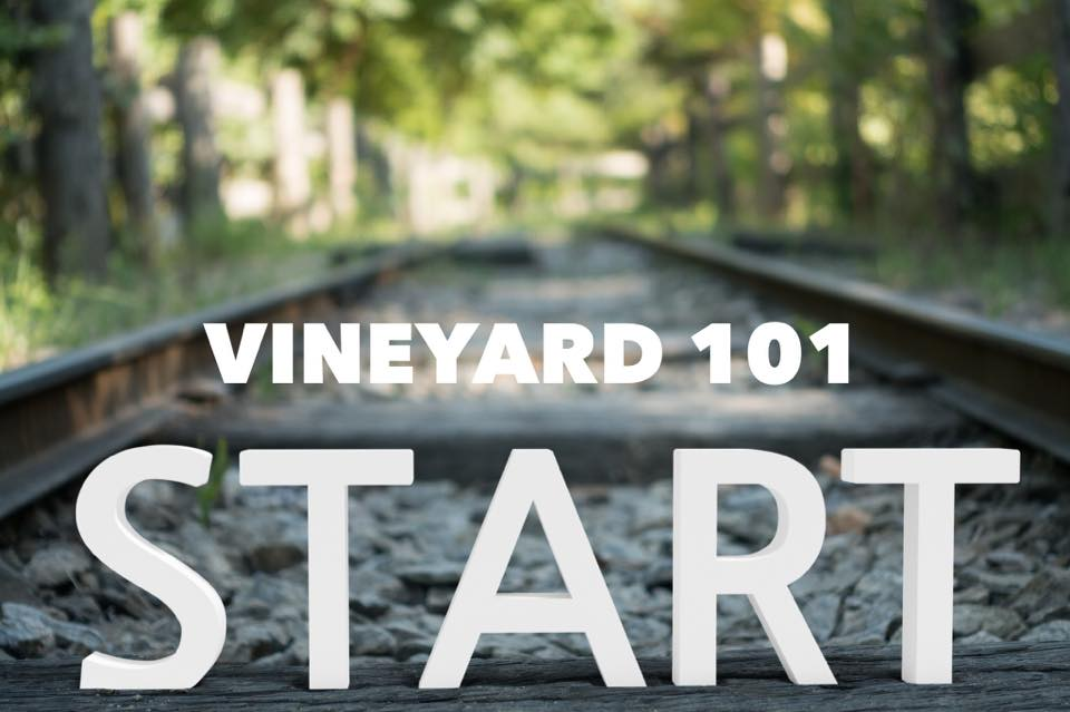 Vineyard 101