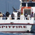 Spitfire @ Dock 52, Marina Del Rey