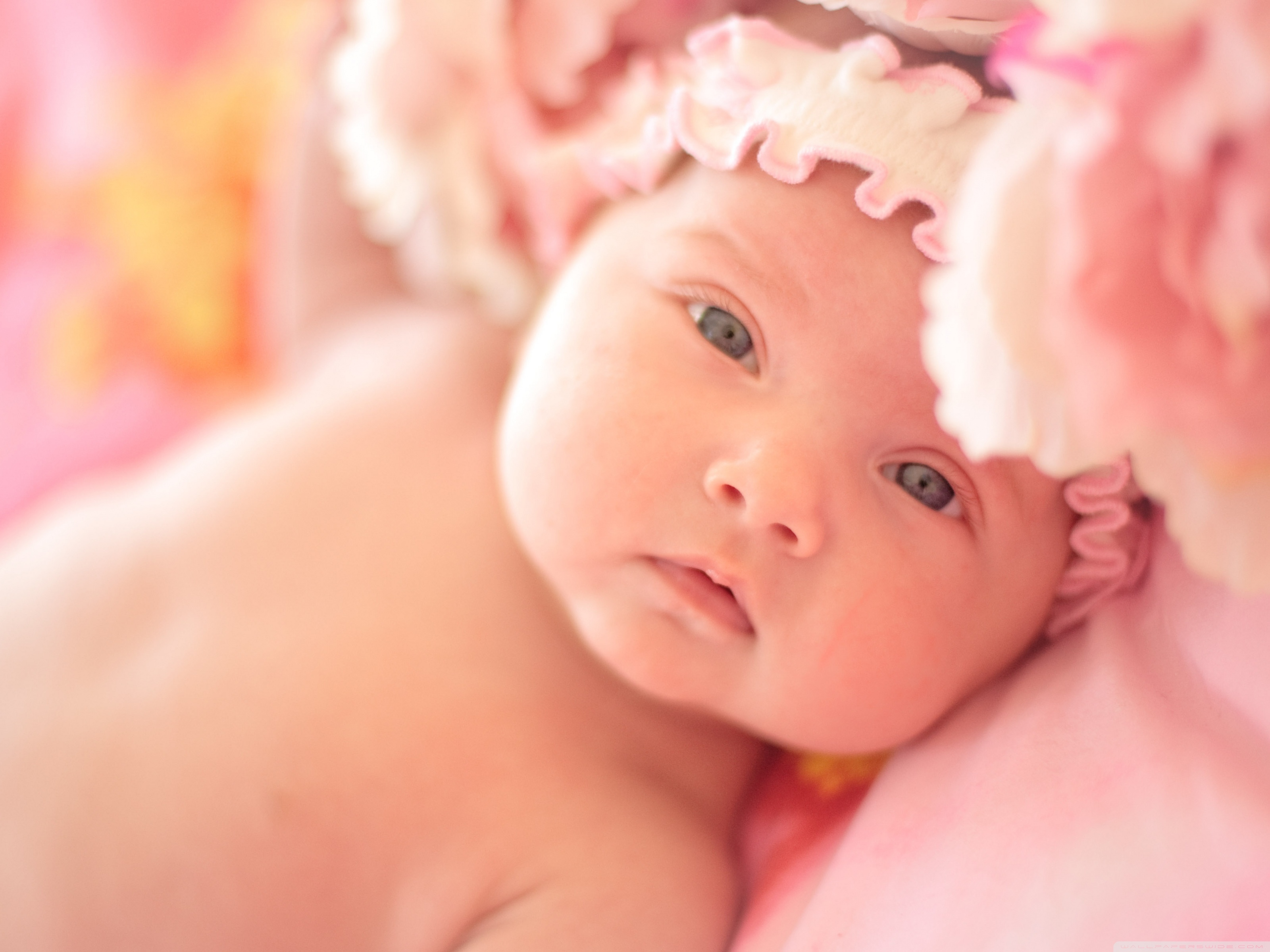 new born babies wallpapers