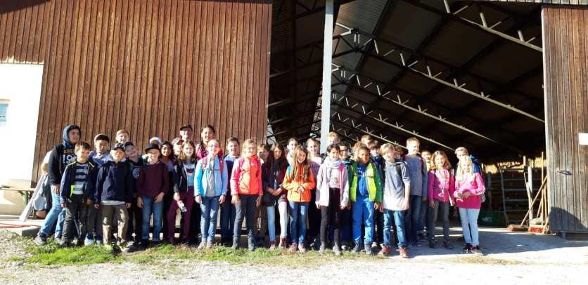 12.10.2018: 5ab besucht am Umwelttag den Bauernhof der Familie Streicher