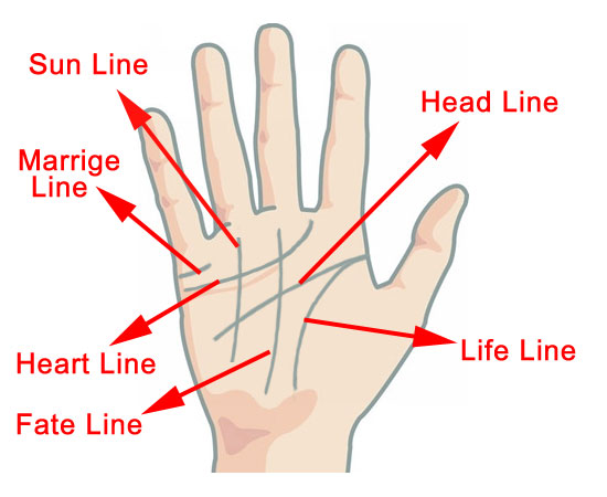 palmistry diagram marriage line how to read car wiring symbols palm reading your and answer all question by sarahacone