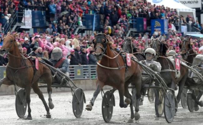 2020 Elitloppet Predictions And Betting Tips Gamingzion