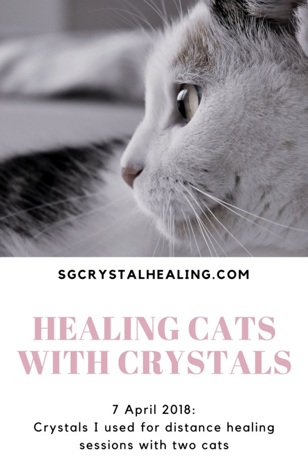 Healing Cats with Crystals 07 April 2018 Pinterest