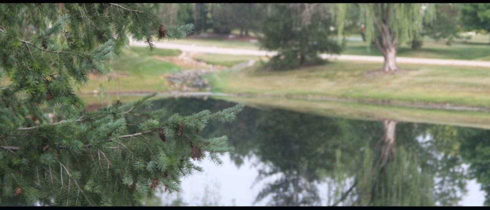 Bristol Pond Landscape