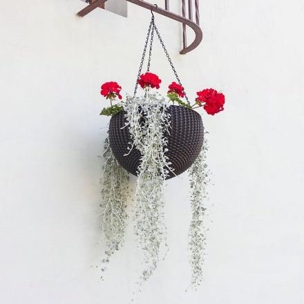 Maceta de colgar hanging sphere Keter
