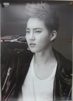 EXO - B&W Poster (Suho)
