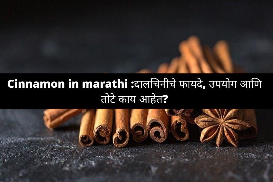 cinnamon in marathi