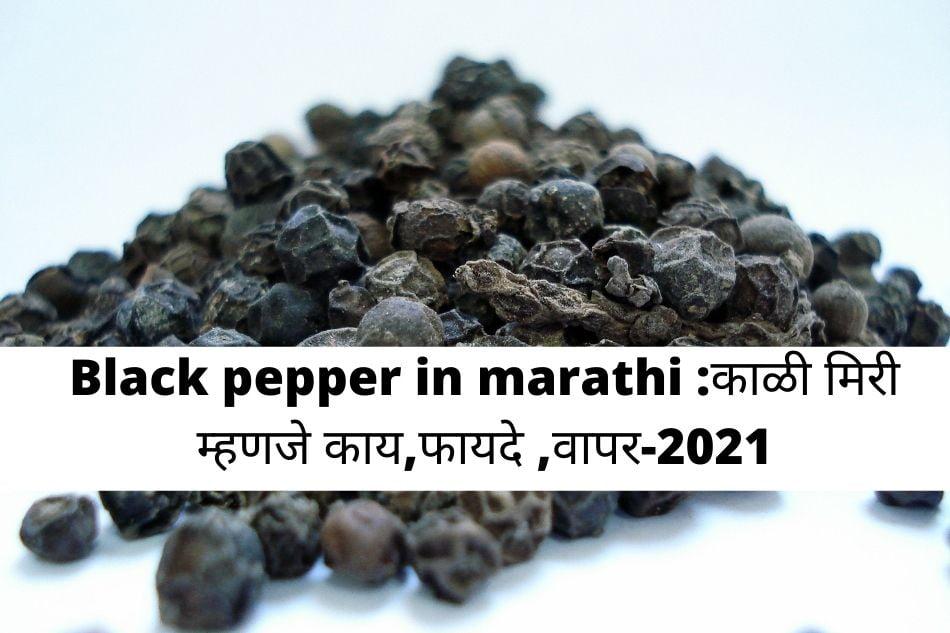Black pepper in marathi