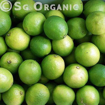 green organic lime