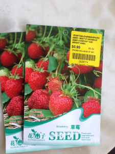 Strawberry Seeds in Singapore