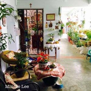 Singapore edibles corridor garden
