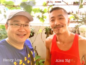 SG Grapes Growers