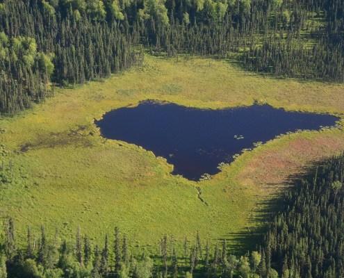 Alaska: cuore