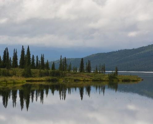 Alaska: Denali NP panorama