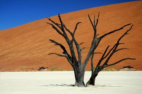 Namibia: Deadvlei