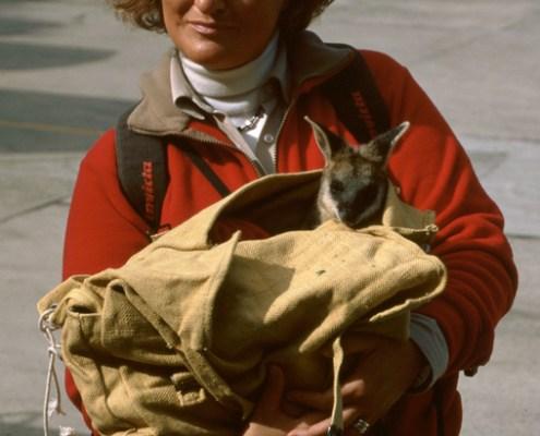 Australia: Francy con cangurino.