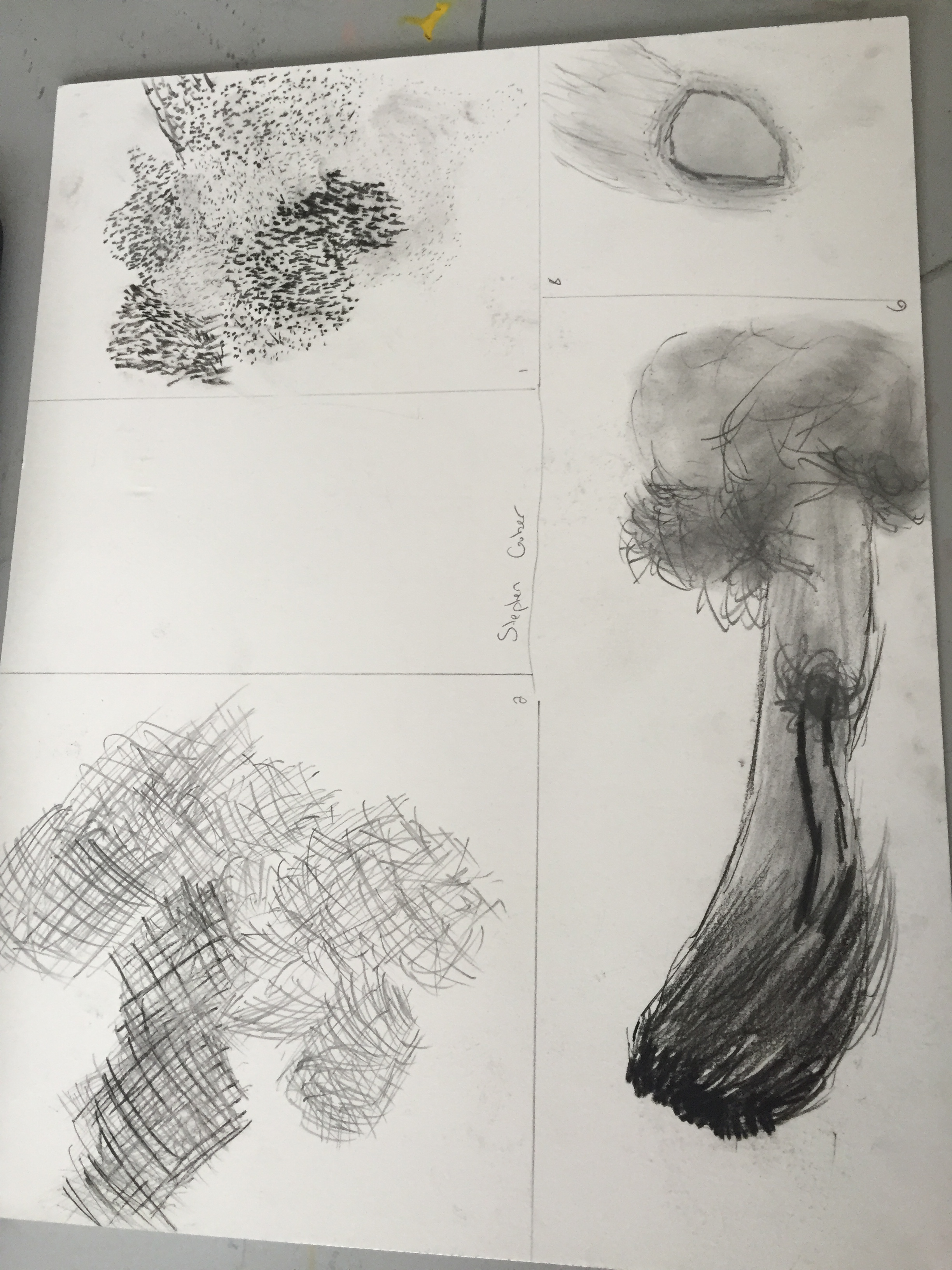 8 Sketches Of Broccoli Stippling Cross Hatching