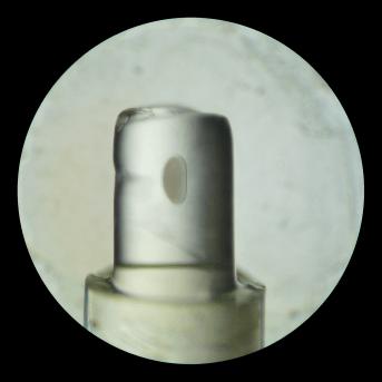 Multi-view microscopy