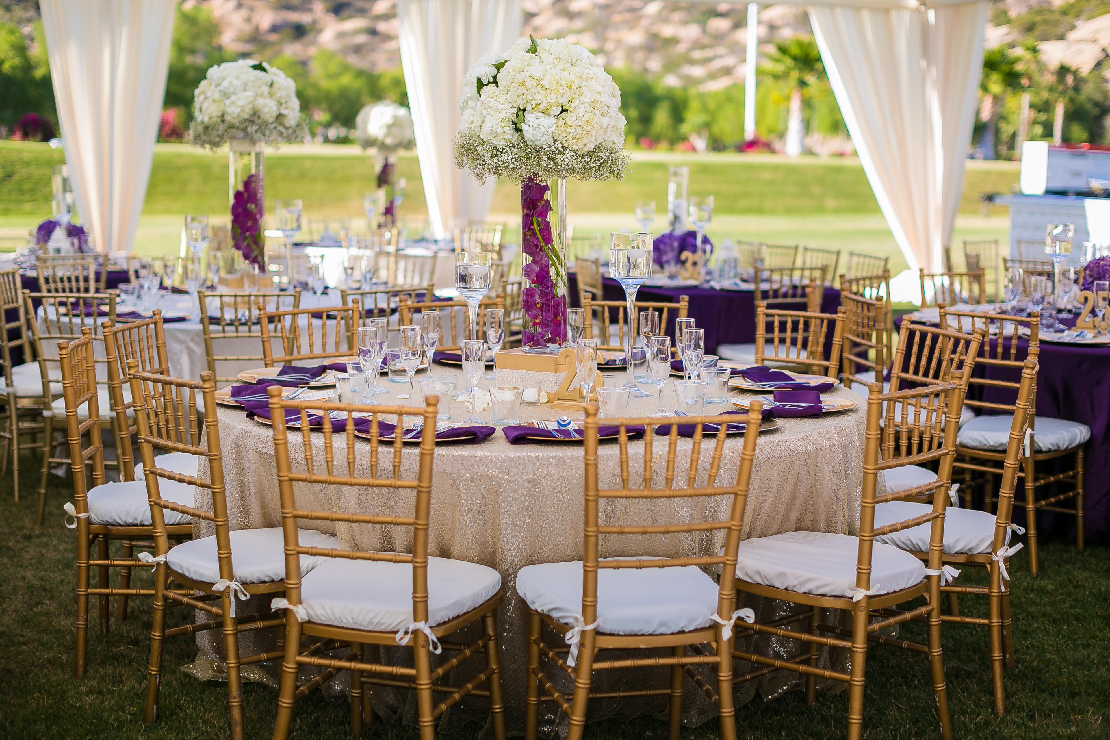 chiavari chairs wedding ceremony outside rocking walmart 19 groomsmen and 8 bridesmaids riddhi amish