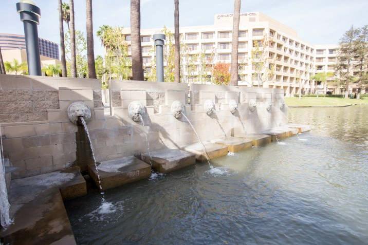 Lovely fountains in in the lagoon where the ceremony took place.