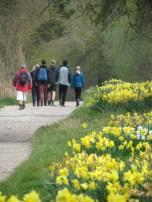 A walk in Wales