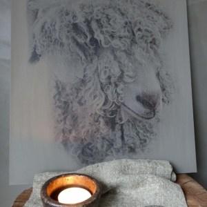 Shabbys-Stoer in wonen-Kalkverf schilderspaneel, schaap lang haar groot, sobere en stoere stijl