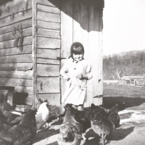 Wumpy with the chickens