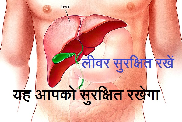 Liver in hindi