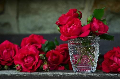 गुलाब की खुशबु