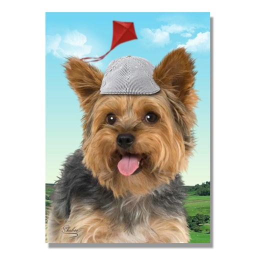 Yorkshire Terrier Yorkie dog