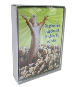 Box of Squirrel cards