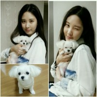 Girls' Generation's SeoHyun shares some news about her puppy named Dubu