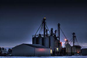 Seed-Grain-Plant-Wetaskiwin-Alberta-Canada-03-A
