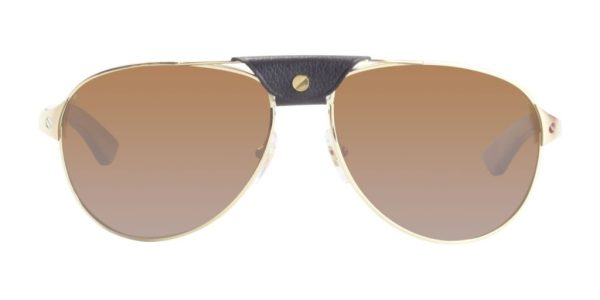 Cartier Santos De Cartier Sunglasses for men