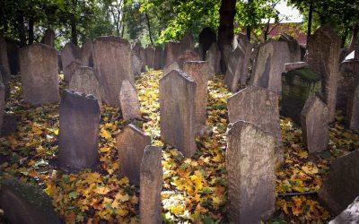 The Jewish Cemetery / Prague