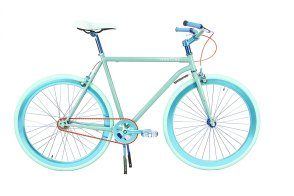 Father's Day matron cycling bike